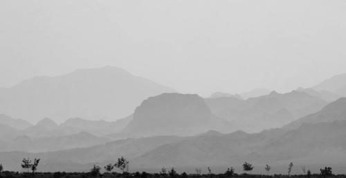 Ali Omidvar - Landscape